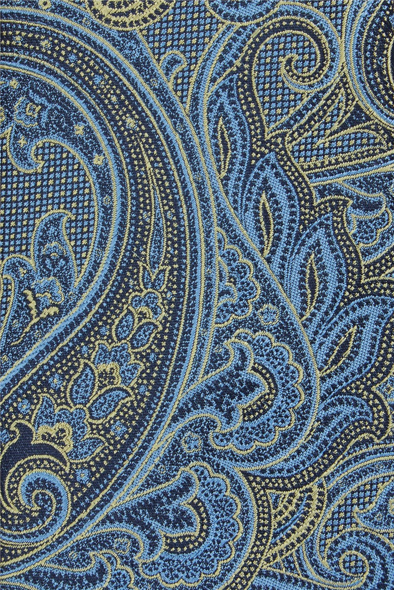 Gold & Navy Textured Paisley Tiie