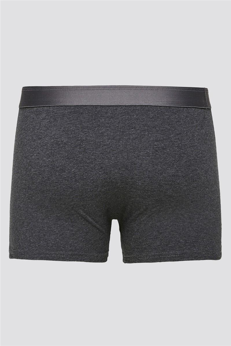 Trunk Short in Light Grey